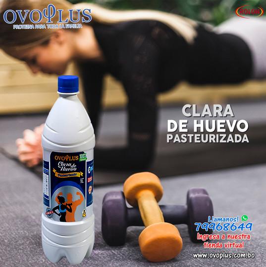 Arte Ovoplus Solo Clara.jpg