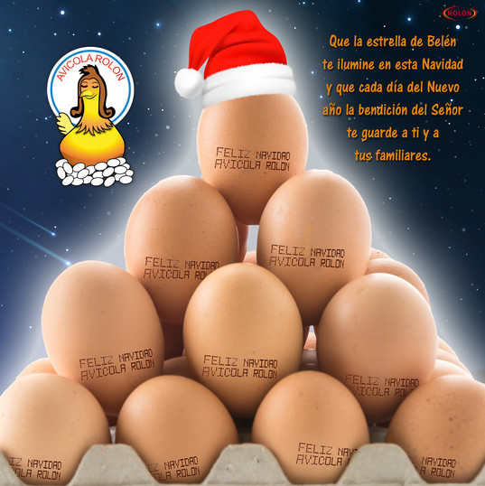 Arte Rolon Huevo Navidad.jpg