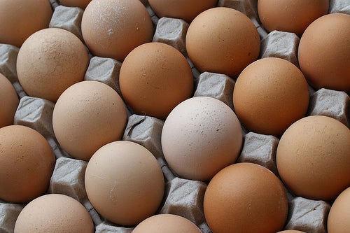 cosas_que_no_sabias_sobre_los_huevos....