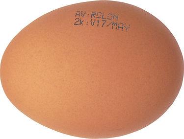 Armado Huevo Calado y Sellado Chico.jpg