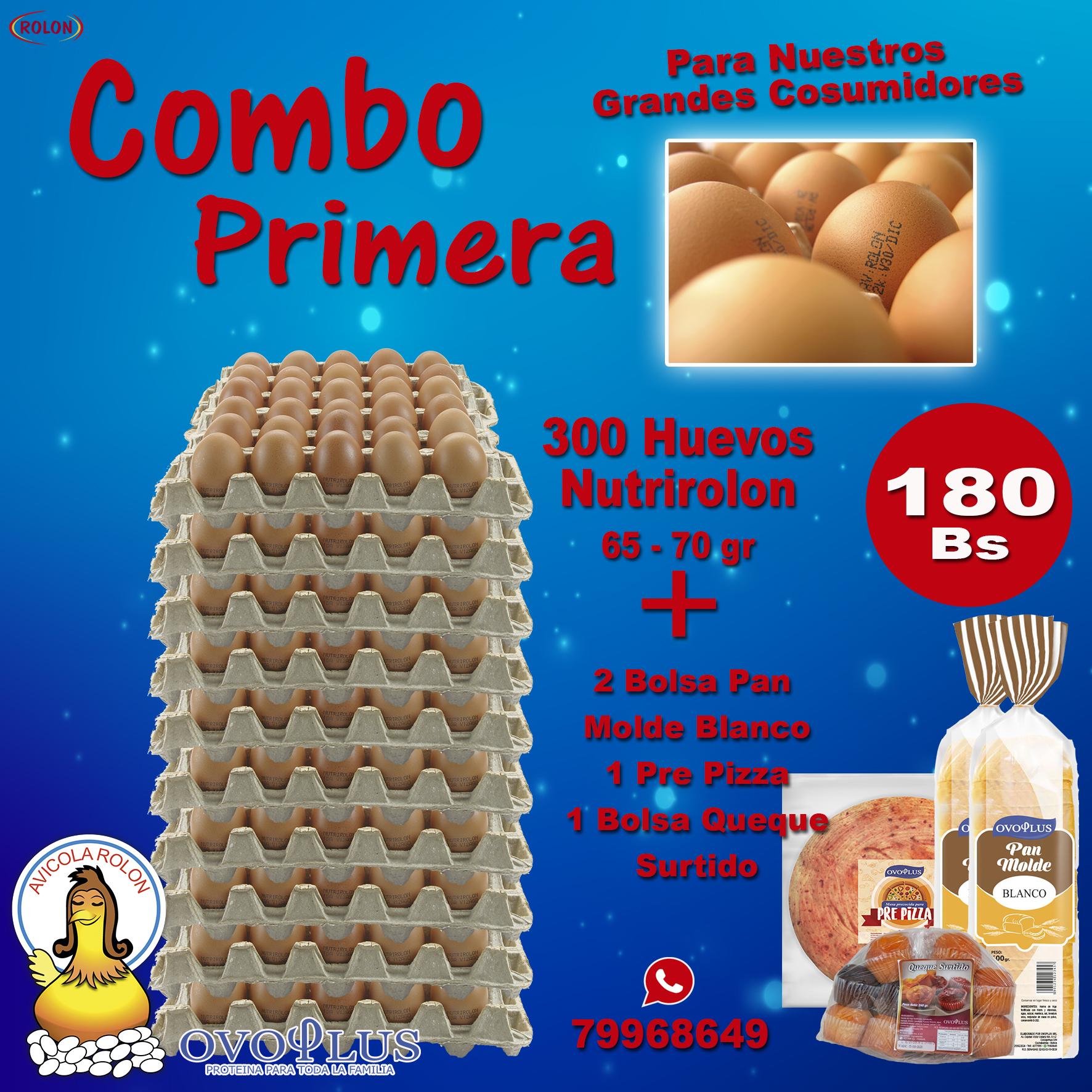 Arte Rolon Combo 300 Primera