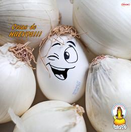 Arte Rolon Cosas de Huevos3.jpg