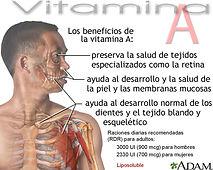 Vitamina A.jpg