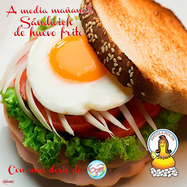 Sandwich de Huevo Frito.jpg