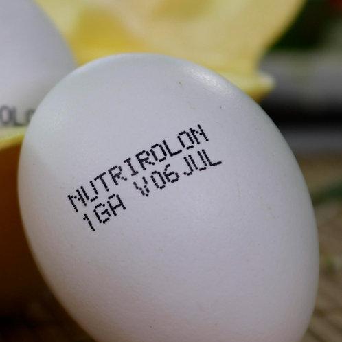 NUTRIROLON SABOR DEL CAMPO ( 70 a 75 gr, )