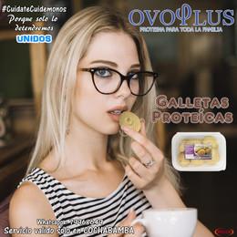 Arte Ovoplus Galletas2.jpg