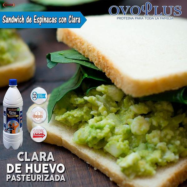 Sandwich de Espinaca con Clara.jpg