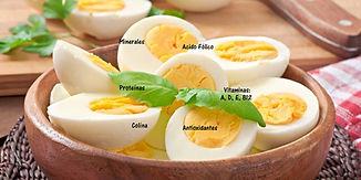 Slader Bol Huevos Nuevo.jpg