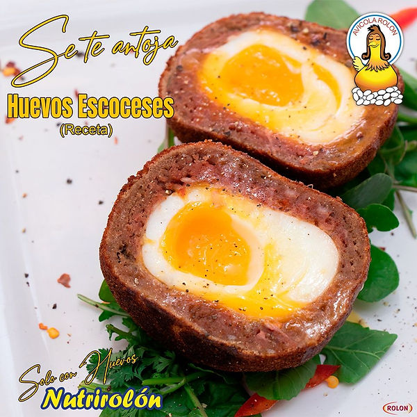 Huevos Escoceses.jpg