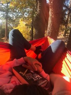 westside hammock_edited
