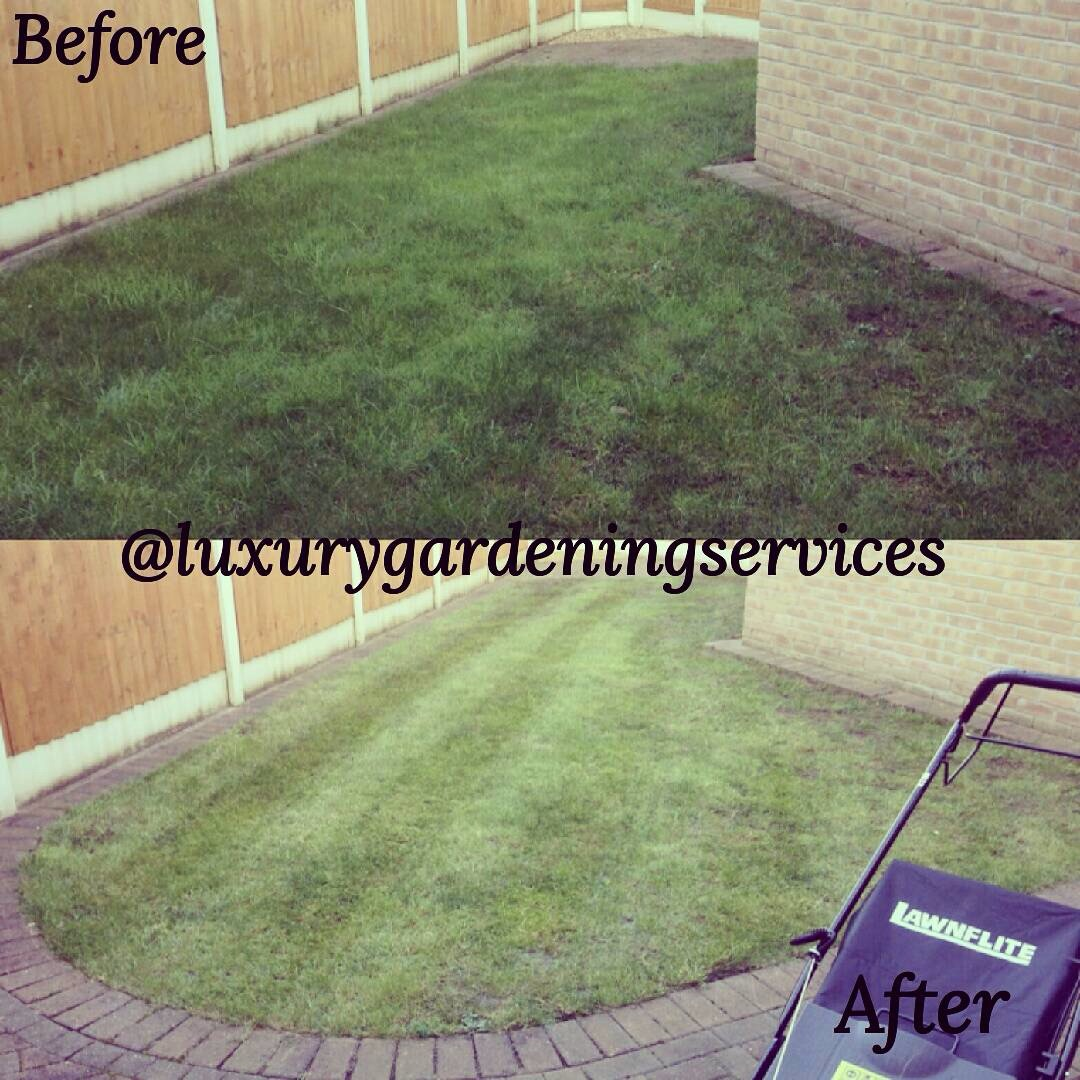 Liverpool lawn mowed