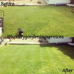 Lawn mowing Liverpool