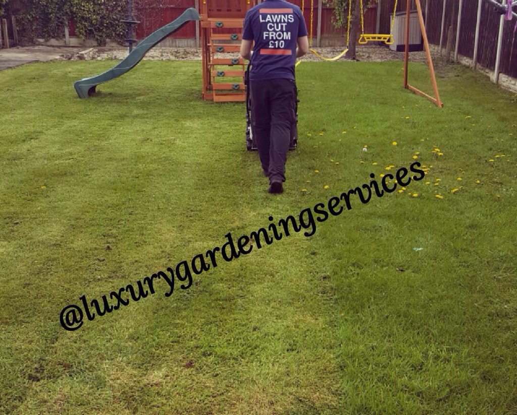 Gardening in Liverpool