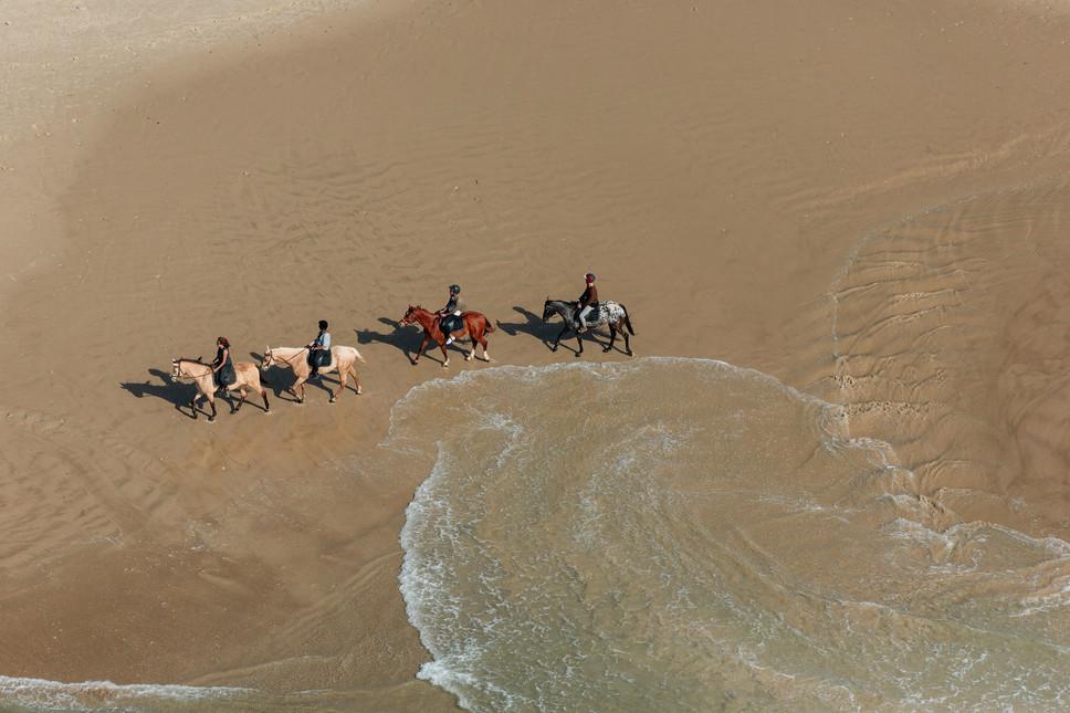 Mediterranean Coast_Israel_Horses 1.jpg