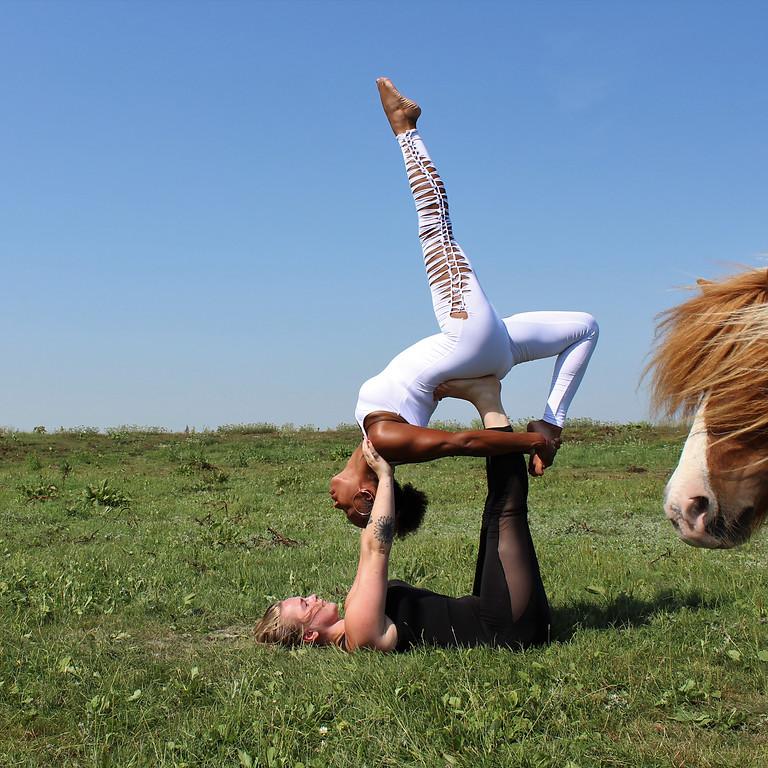 Workshop Acro Yoga