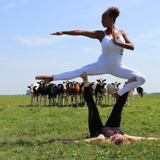 Yoga Awareness Event