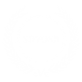 SDVOSB Service-Disabled Veteran-Owned Small Business