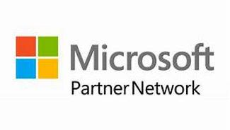 MS Partner.jpg