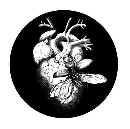 Heartbeetle.
