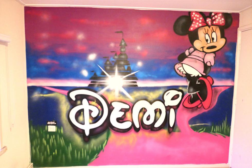 Disney kamer, Demi