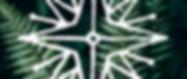 иконка зима 2020-2021.png