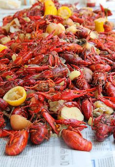 Mud Bugs For Everyone!