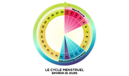 normal_cycle_FR_380x225.jpg