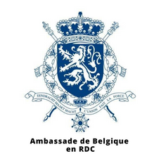 Ambassade de Belgique.png
