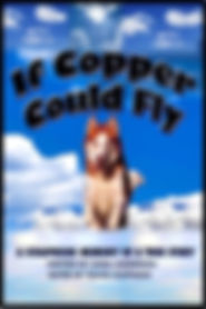 If Cooper Could Fly.jpeg