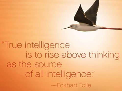 """True intelligence is to rise above..."""