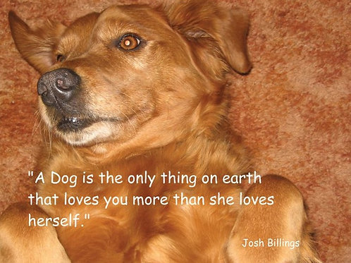 A Dog loves you more than herself