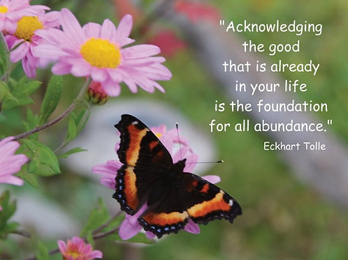 """Acknowledging the good that is..."""