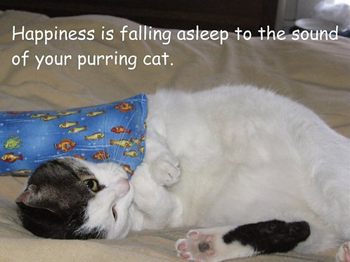 Happiness is falling asleep to the sound...
