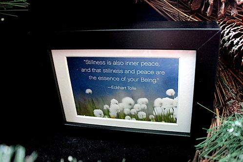 """""""Stillness is also inner peace..."""""""