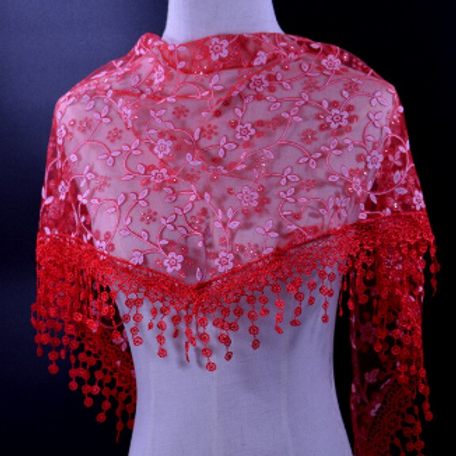 Red Flowers in Lace