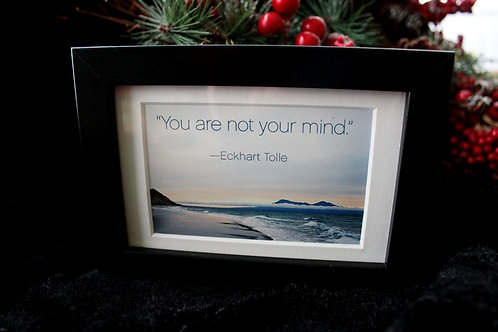 """""""You are not your mind."""""""