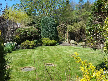 May Gardening in Bradford