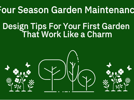 5 Design Tips For Your First Garden    That Work Like a Charm