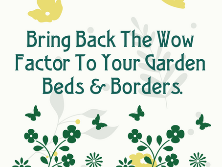 Bring Back The Wow Factor To Your Beds & Borders