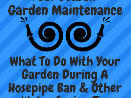 What To Do With Your Garden During A Hosepipe Ban