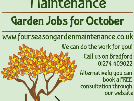 Garden Jobs for you in October