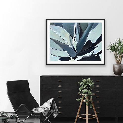 Black and Gray Agave
