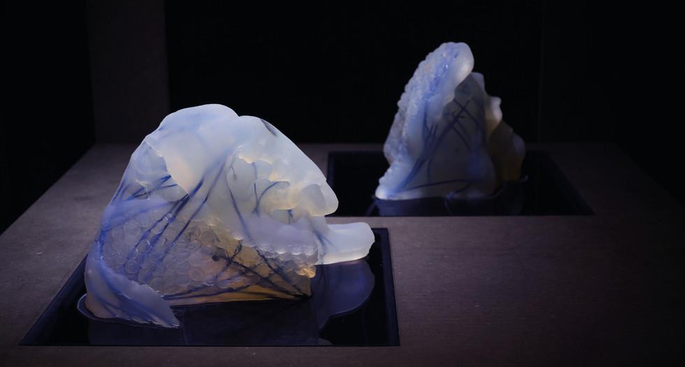 The Haptic Sculptures