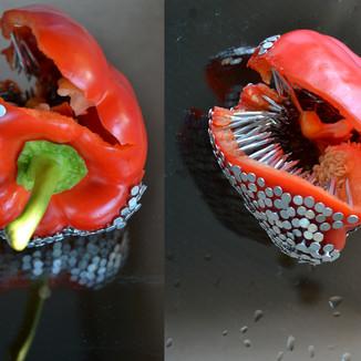 Pepper (2013)