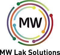 Logo Lak Solutions-1.jpg