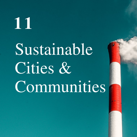 SDG 11.png