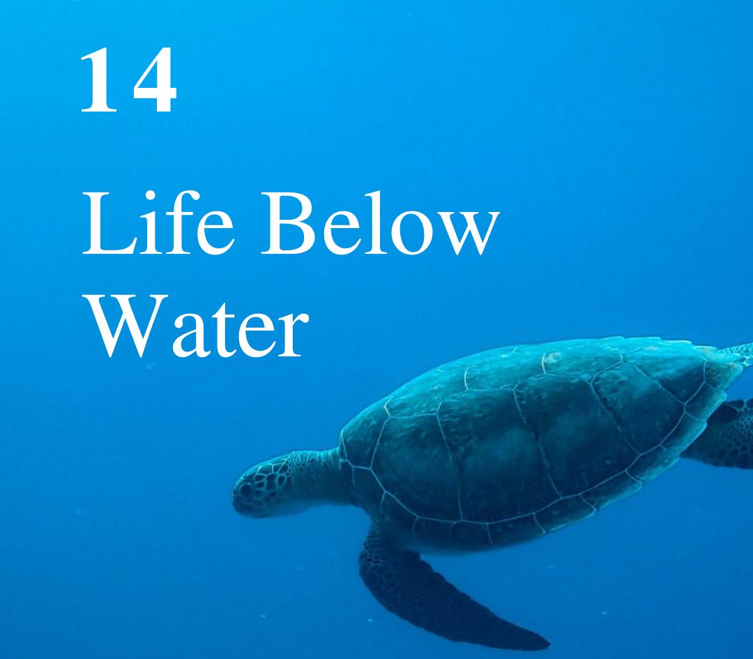 SDG 14: Life Below Water
