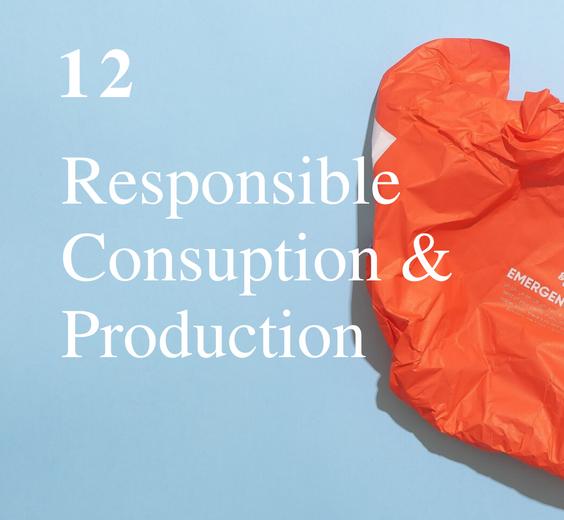 SDG 12: Responsible Consumption & Production