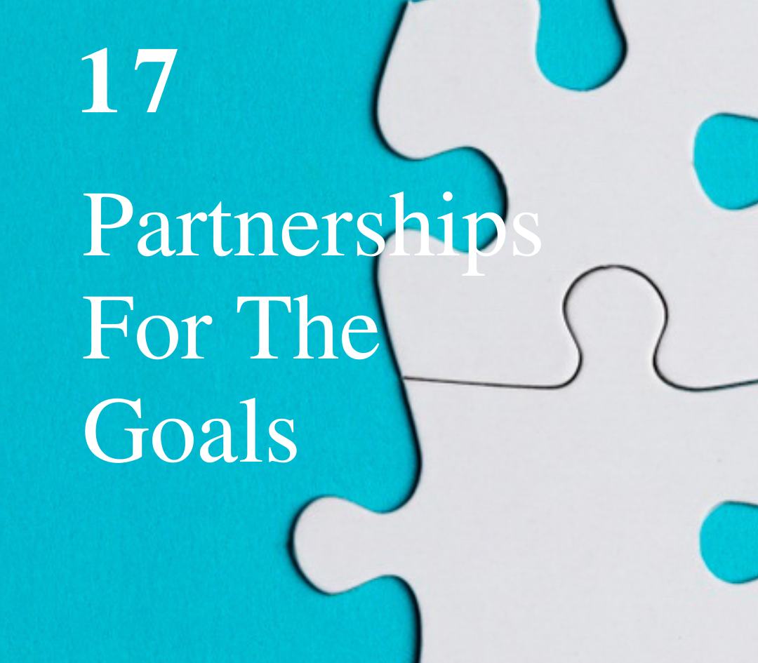 SDG 17: Partnerships For The Goals