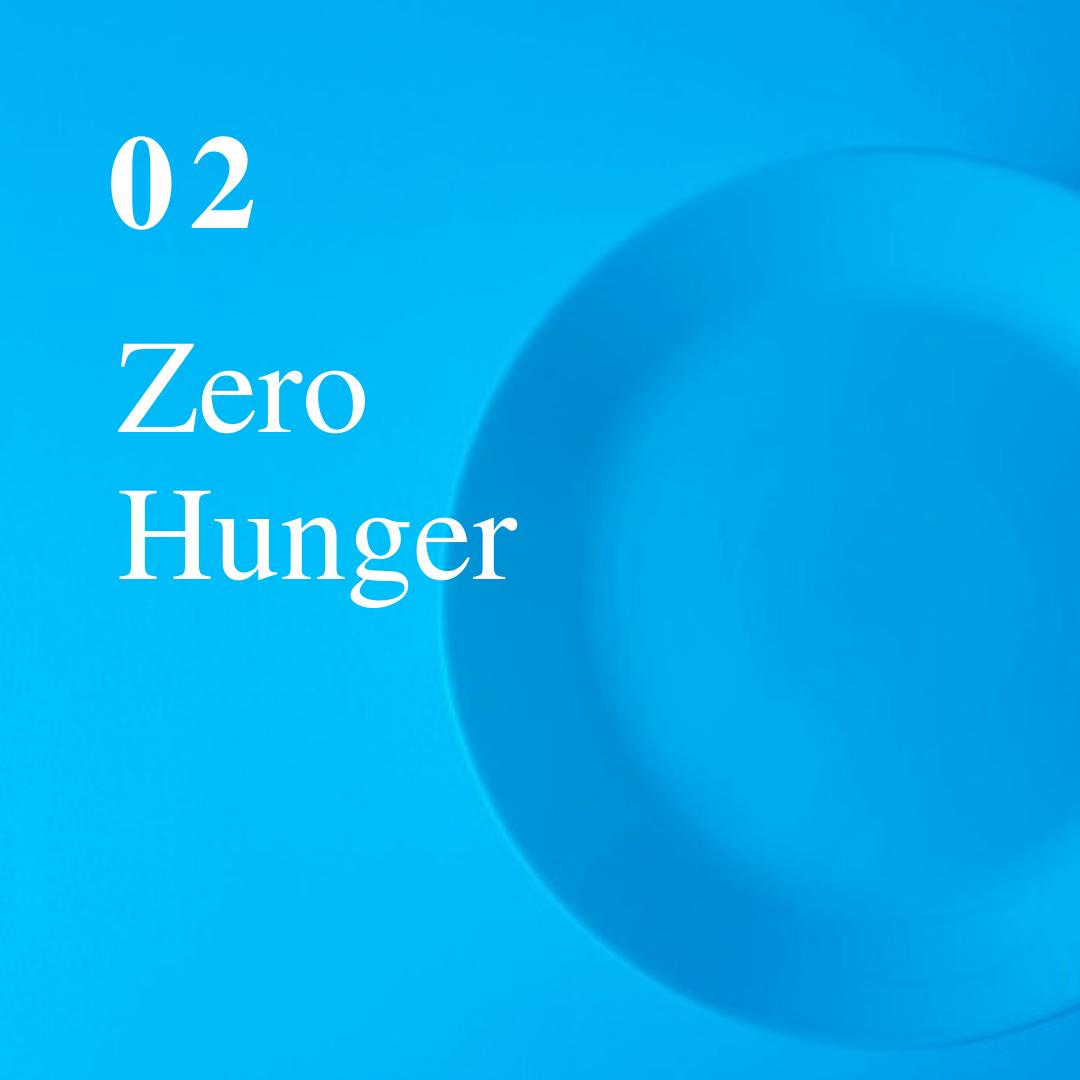 SDG 2.png